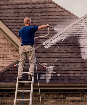 Roof Washing Service