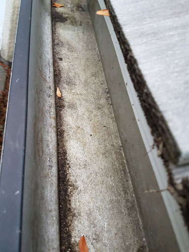 gutter cleaning barrington