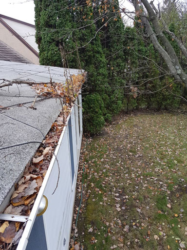 heavy gutters clogged