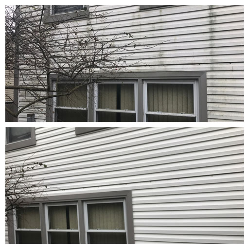 vinyl siding soft washing before after